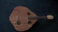 Tortoise Shell Guitar