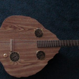 Tortoise Shell Guitar by Cipriano Vigil - Front